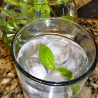 Lemon Verbena fresh leaf tea