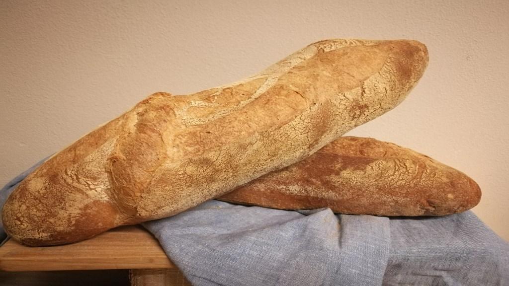 Las migas de pan mas viejo del mundo.1920