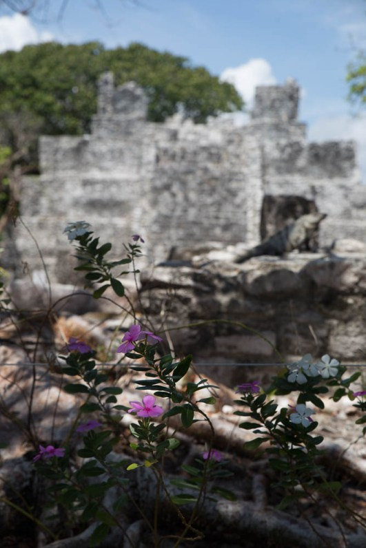 El Meco, not the biggest Mayan ruins, but a pretty tranquil spot to escape the crowds in Cancun.