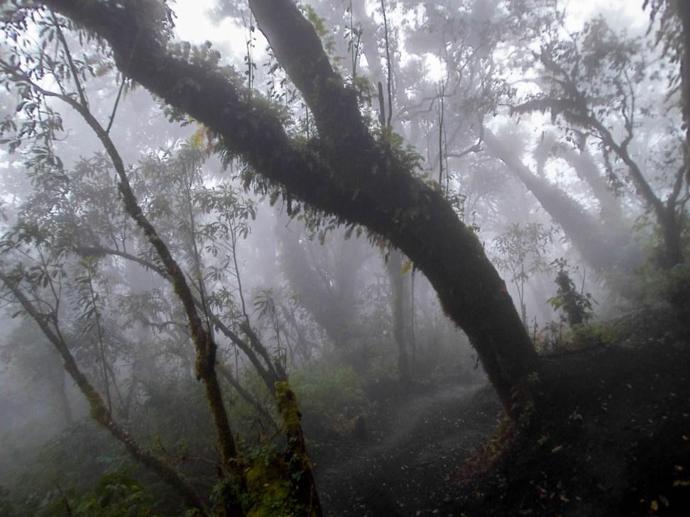 Climbing Acatenango