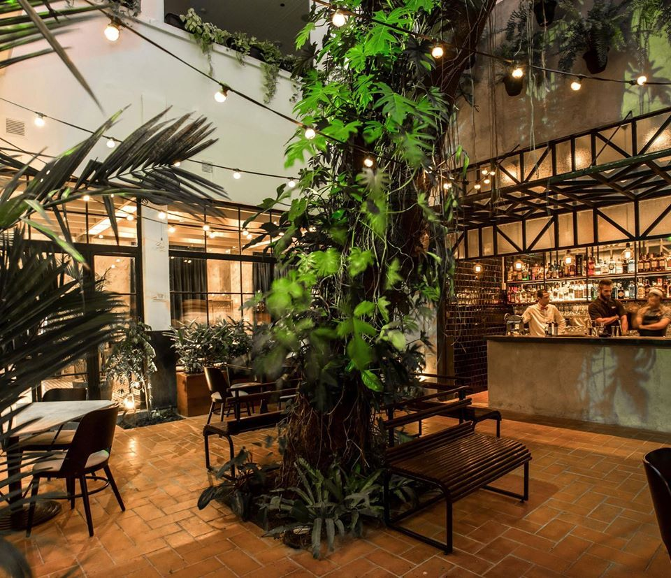 The new restaurant location of Donde Jose has an internal courtyard with an amazing tree in the middle, lots of plants and a fully loaded bar
