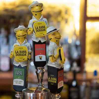 ¡La cerveza La Rana Dorada salva a las ranas en peligro de extinción!