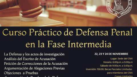 Primer Curso Práctico de Defensa Penal en la Fase Intermedia
