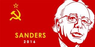 Image result for sanders -Democratic Socialist