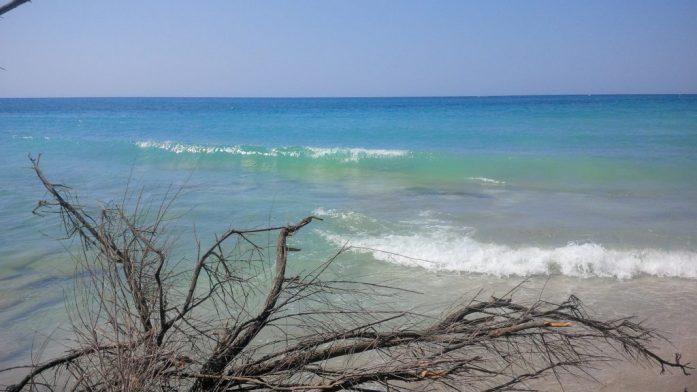 migliori spiagge del Salento - Pineta Torre san Giovanni