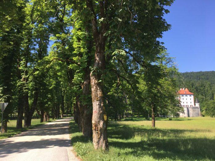 Castello di Sneznik Slovenia