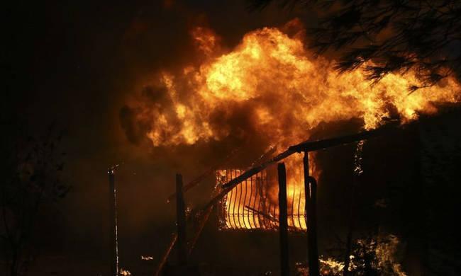 Συγκλονιστικό βίντεο – ντοκουμέντο: Εμπρηστής βάζει φωτιά – Συνελήφθη και δικάζεται | panathinaikos24.gr