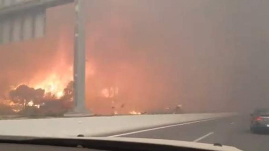 Βίντεο-σοκ από τη φωτιά στην Κινέτα: Οι φλόγες μια… ανάσα από τα αυτοκίνητα | panathinaikos24.gr
