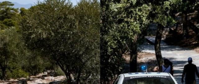 Επιστολή – γροθιά στον Τσίπρα από τη μάνα που έχασε το παιδί της στου Φιλοπάππου   panathinaikos24.gr
