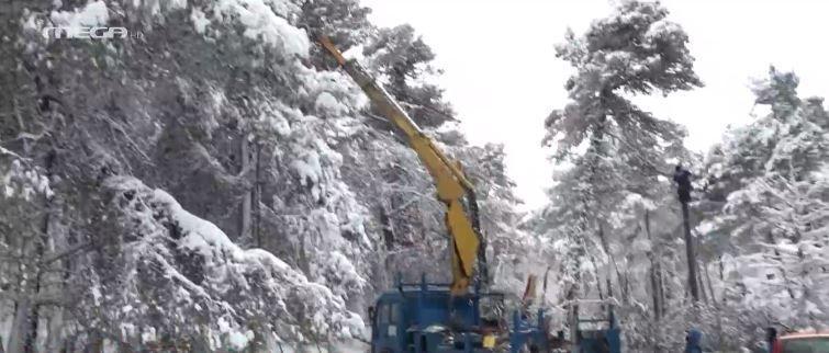 «Μήδεια»: Ποιος ευθύνεται για τις διακοπές ρεύματος; Πλένουν τα πιάτα στον πάγο στην Άνοιξη! (vids) | panathinaikos24.gr
