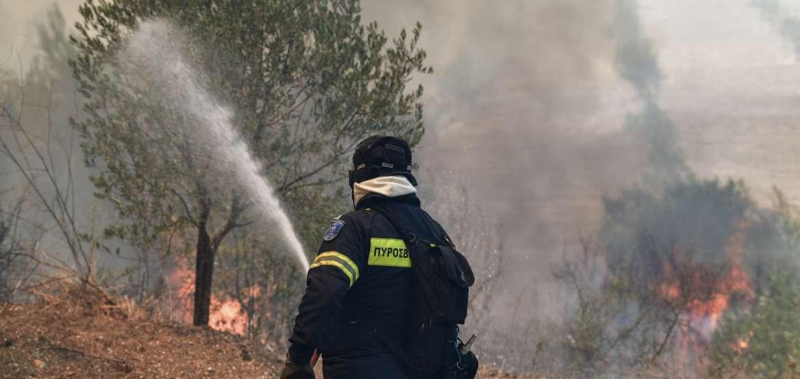 Συναγερμός: Μεγάλη φωτιά στην Πάρνηθα!   panathinaikos24.gr
