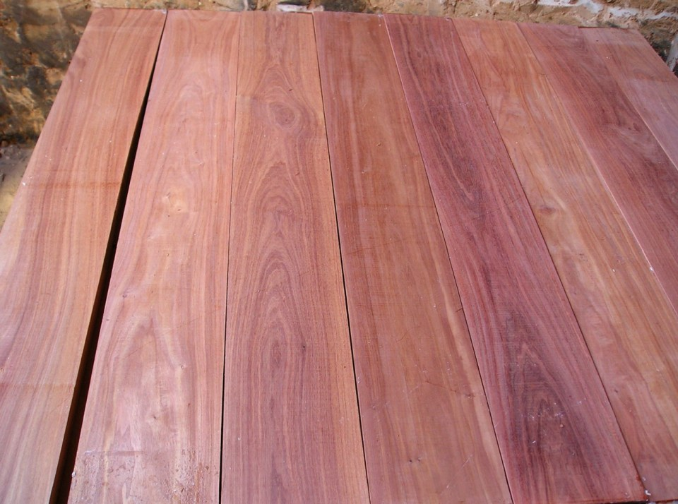 gỗ hương panama