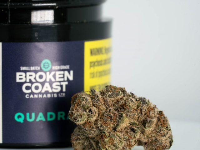 Headstash (Quadra) by Broken Coast