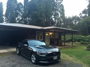 Ma Hoss and ma house