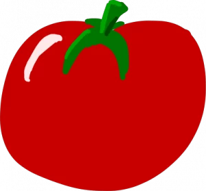 a hand-drawn shiny red tomato