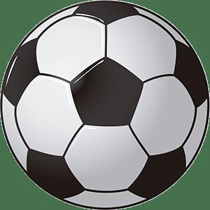 balón de futbol pandanna imagen vector libre acceso