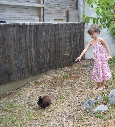L'échange de maison, un bon moyen de faire garder ses animaux