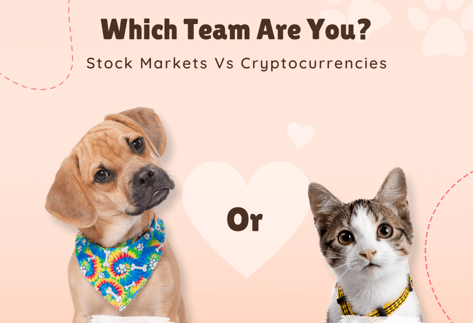Stocks Vs Crypto