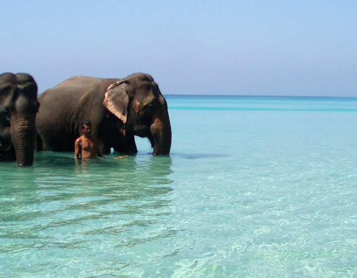 Elephant-Beach-Havelock-Island
