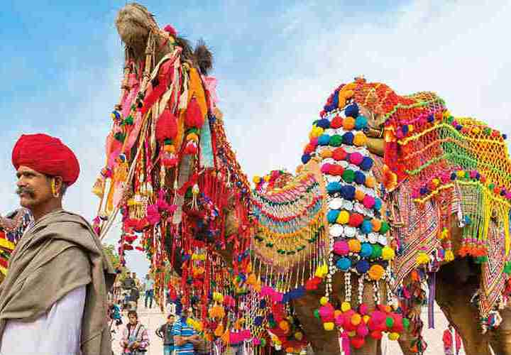 Pushkar Camel Fair of Rajasthan