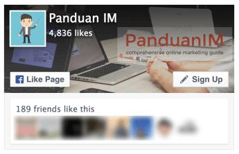 Widget Facebook Page