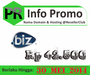 Promo nama domain dot biz