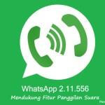 WhatsApp, WA, Voice Call