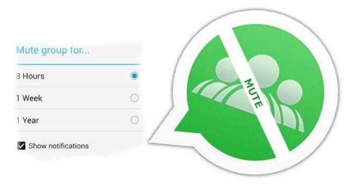 Cara Silent Chat Group WhatsApp