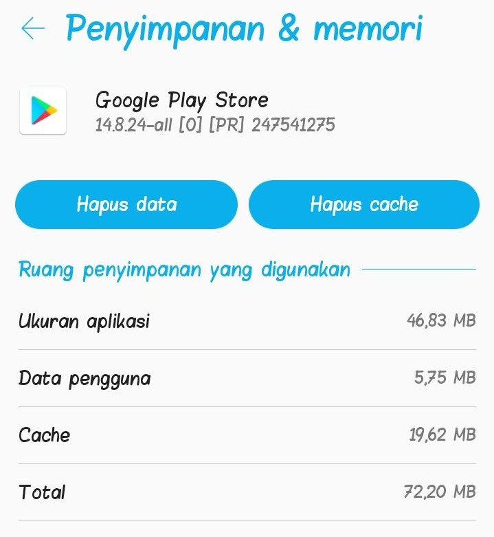 Lupa PIN Playstore