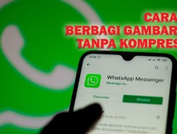 WhatsApp Izinkan Berbagi Gambar Dengan Kualitas Tinggi, Begini Caranya!