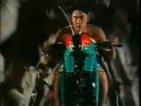 belalang-tempur-9