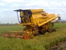 mesin-padi
