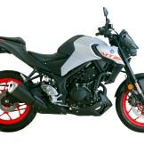 Yamaha MT-25 2020 Malaysia_PanduLaju12