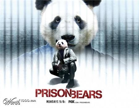 prison-bears