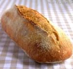 Filone di grano duro