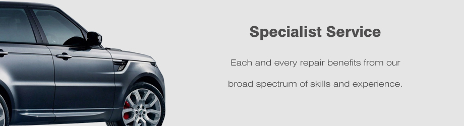 Specialist Service