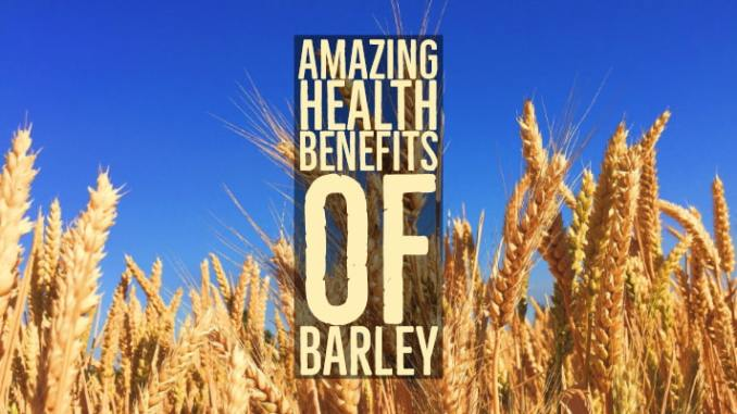 Amazing Health Benefits Of Barley