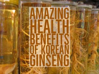 Health Benefits Of Korean Ginseng