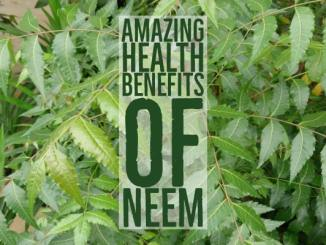 Amazing Health Benefits Neem