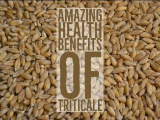 Amazing Health Benefits Triticale