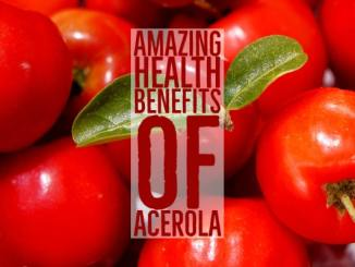 Amazing Health Benefits Acerola