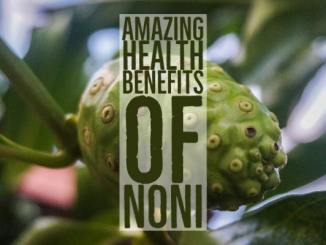 Amazing Health Benefits Noni