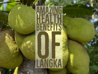 Amazing Health Benefits Langka