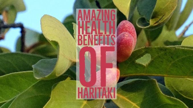 Amazing Health Benefits Haritaki