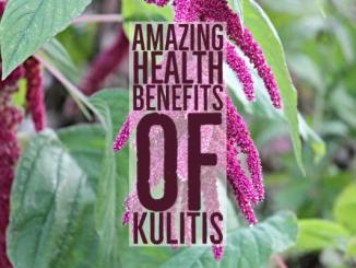 Amazing Health Benefits Kulitis