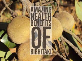 Amazing Health Benefits Of Bibhitaki