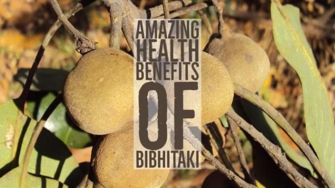 Amazing Health Benefits Of Bibhitaki