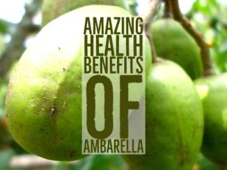 Amazing Health Benefits Ambarella
