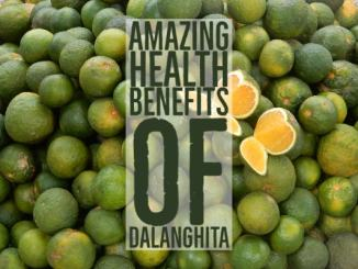 Amazing Health Benefits Dalanghita