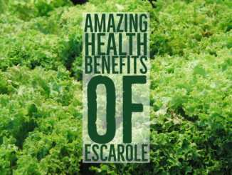 Amazing Health Benefits Escarole
